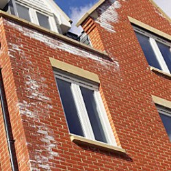brick-damage-efflorescence